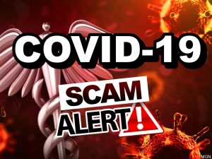 covid-19 scam alert image